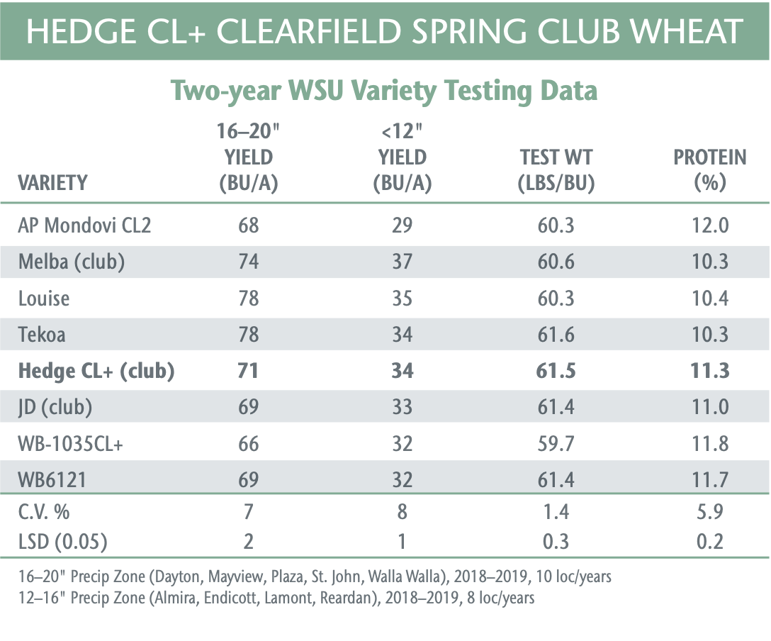 HEDGE CL+ - Clearfield Spring Club Wheat