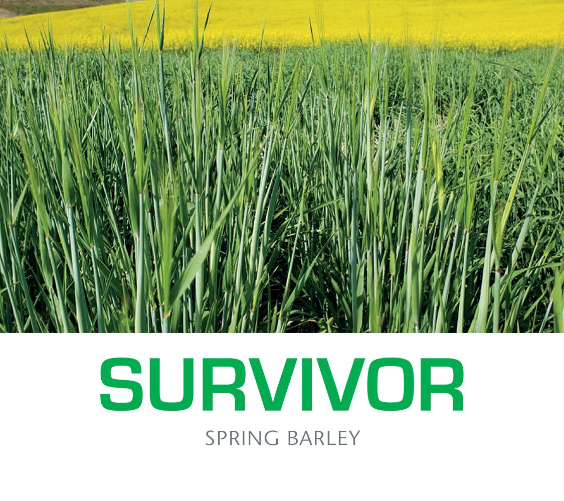 Survivortitle